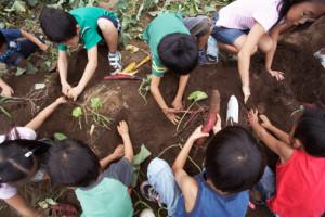 Bambini piantano piante