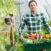 agricoltura e cibo